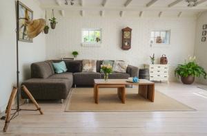 healthy living room